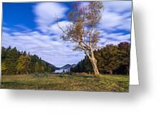 Pond House Views Greeting Card