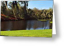 Pond In A Garden, Middleton Place Greeting Card