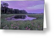 Pond Light Greeting Card