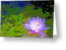 Pond Lily 29 Greeting Card