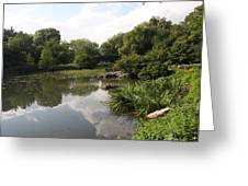 Pond Reflection - Central Park Greeting Card