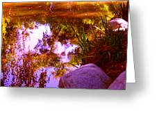 Pond Reflextions Greeting Card