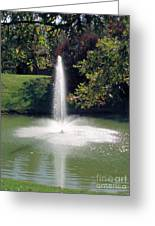 Pond With Water Feature Greeting Card