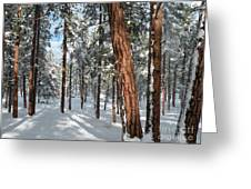 Ponderosa Winter Greeting Card