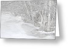 Pondside Thaw Greeting Card