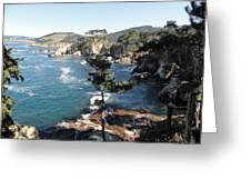 Pont Lobos Cove Greeting Card