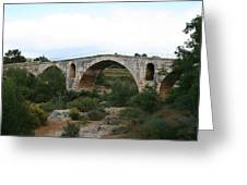Pont St. Julien And Calavon River  Greeting Card