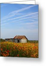 Pontotoc Shed 2am-110573 Greeting Card