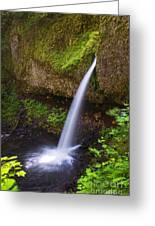 Ponytail Falls - Columbia River Gorge - Oregon Greeting Card