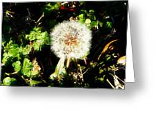 Poof I Will Be Gone Greeting Card
