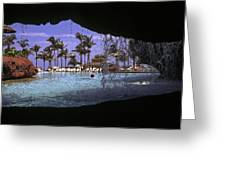 Pool And Palms Greeting Card