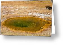 Pool In Upper Geyser Basin In Yellowstone National Park Greeting Card