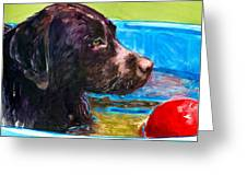 Pool Party Of One Greeting Card by Molly Poole