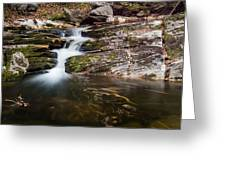 Pooling River Greeting Card
