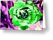 Pop Petals Greeting Card