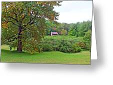 Poplar Tree In The Valley Greeting Card