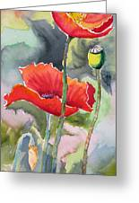 Poppies 3 Greeting Card