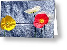 Poppies And Granite Greeting Card