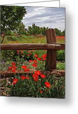 Poppies At The Farm Greeting Card