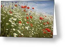 Poppies Et Al Iv Greeting Card