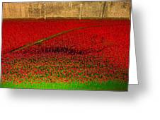 Poppies For The Fallen Greeting Card by Andrew Lalchan