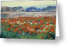 Poppies In Flanders Fields Greeting Card by Michael Creese