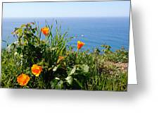 Poppies On The Pacific Greeting Card