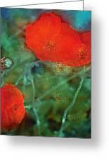 Poppy 30 Greeting Card