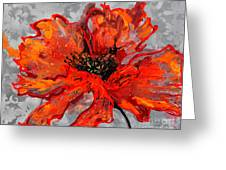 Poppy 41 Greeting Card