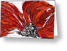 Poppy 44 Greeting Card