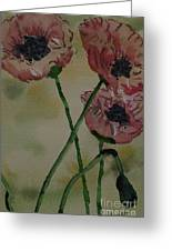 Poppy Breeze A Greeting Card