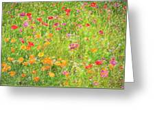 Poppy Confusion Painterly Textured Greeting Card