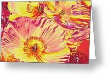 Poppy Extravaganza Greeting Card