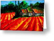 Poppy Field  Sold Greeting Card