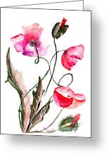 Poppy Flowers Greeting Card