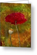 Poppy II Greeting Card