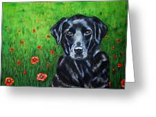 Poppy - Labrador Dog In Poppy Flower Field Greeting Card