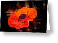 Poppy Passion Square Greeting Card