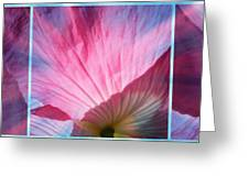 Poppy Rays Collage Greeting Card