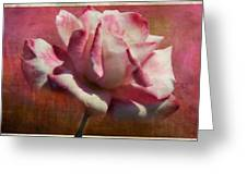 Poppy Rose Greeting Card