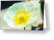 Poppy Series - Beside The Sidewalk Greeting Card