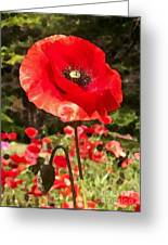 Poppy Watercolor Effect Greeting Card