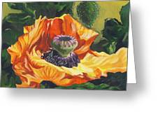 Poppy With Yellow Greeting Card
