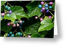 Porcelain Berries Greeting Card