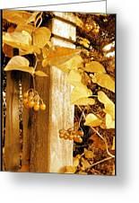 Porch Post Berries Glow Greeting Card