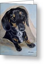 Dachshund Dog Greeting Card