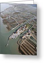 Port Of Cayenne, Marennes Greeting Card