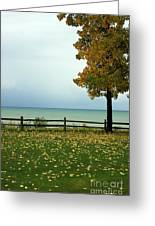 Port Sanilac Lookout, Michigan Greeting Card