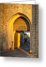Portcullis Aigues-mortes  Languedoc-roussillon France Greeting Card by Colin and Linda McKie