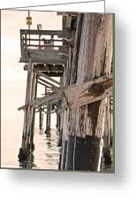 Portion Of The Pier Balboa Greeting Card
